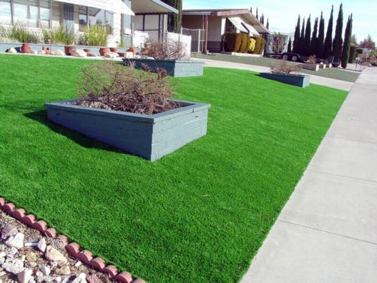 Artificial Grass Photos: Synthetic Grass Cost Lakeland South, Washington Backyard Deck Ideas, Front Yard Landscape Ideas
