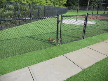 Artificial Grass Photos: Synthetic Grass Cost Moses Lake North, Washington Landscaping Business, Parks
