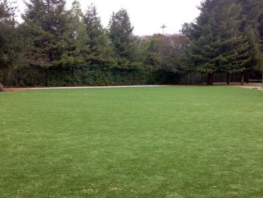 Artificial Grass Photos: Synthetic Grass Cost Tanner, Washington Landscape Design, Parks