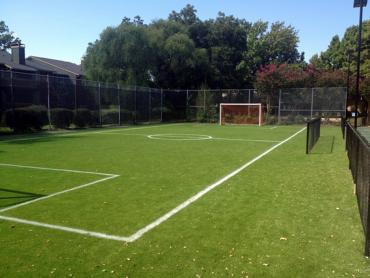 Artificial Grass Photos: Synthetic Grass Cost Woodinville, Washington Backyard Soccer, Commercial Landscape