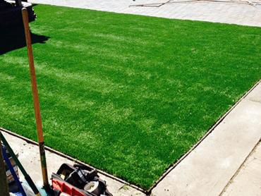 Artificial Grass Photos: Synthetic Grass Machias, Washington Design Ideas