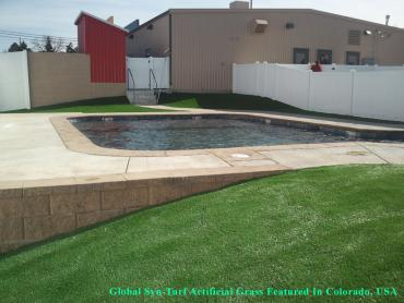 Artificial Grass Photos: Synthetic Grass South Hill, Washington Home And Garden, Backyard Pool