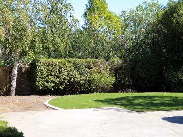 Artificial Grass Photos: Synthetic Lawn Toledo, Washington Lawns, Backyard Design