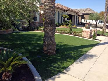 Artificial Grass Photos: Synthetic Turf Edgewood, Washington Lawn And Garden, Front Yard Design