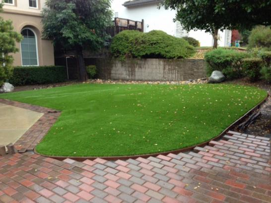 Artificial Grass Photos: Synthetic Turf Lamont, Washington City Landscape, Small Front Yard Landscaping