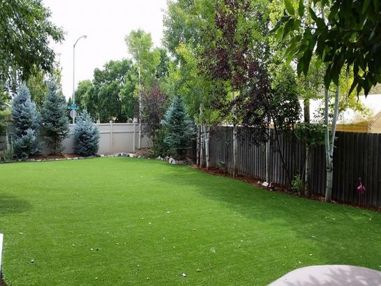Artificial Grass Photos: Synthetic Turf Supplier Anacortes, Washington Landscaping Business, Backyard Landscaping