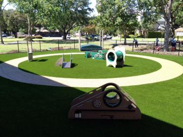 Artificial Grass Photos: Synthetic Turf Supplier Sedro-Woolley, Washington Landscape Photos, Commercial Landscape