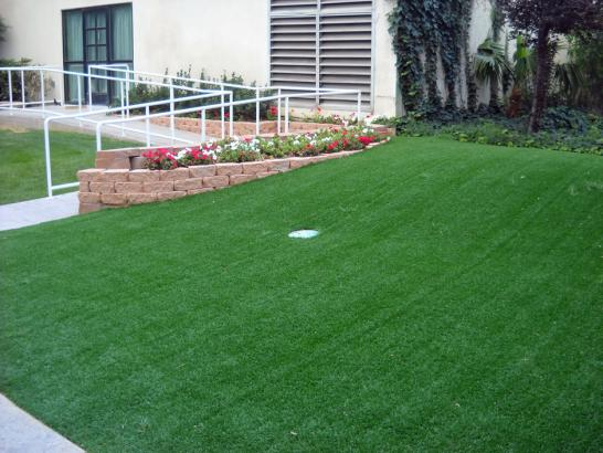 Artificial Grass Photos: Turf Grass Elbe, Washington Backyard Putting Green, Front Yard Landscaping Ideas