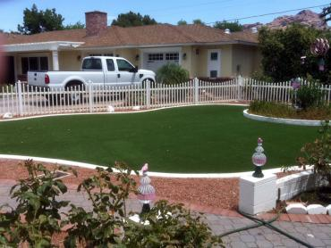 Artificial Grass Photos: Turf Grass Gig Harbor, Washington Landscape Design, Front Yard Ideas