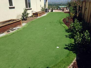 Artificial Grass Photos: Turf Grass Rochester, Washington Landscaping Business, Backyard Ideas