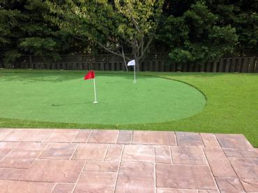 Artificial Grass Photos: Turf Grass Rosalia, Washington Landscaping, Beautiful Backyards