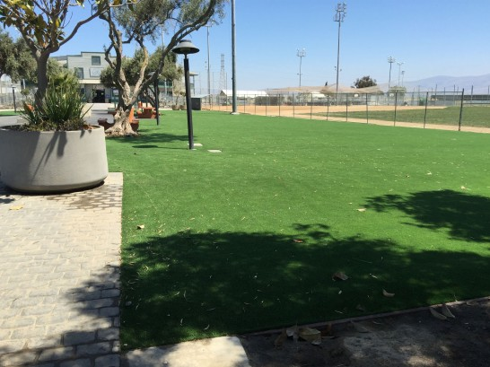 Artificial Grass Photos: Turf Grass Venersborg, Washington Landscape Ideas, Recreational Areas