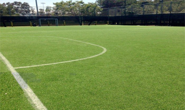 Sports Fields Synthetic Grass in Washington